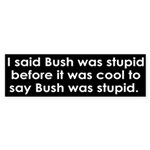 I said Bush was stupid (bumper sticker)