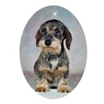 Wirehaired Dachshund Ornaments
