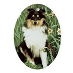 Shetland Sheepdog Ornaments