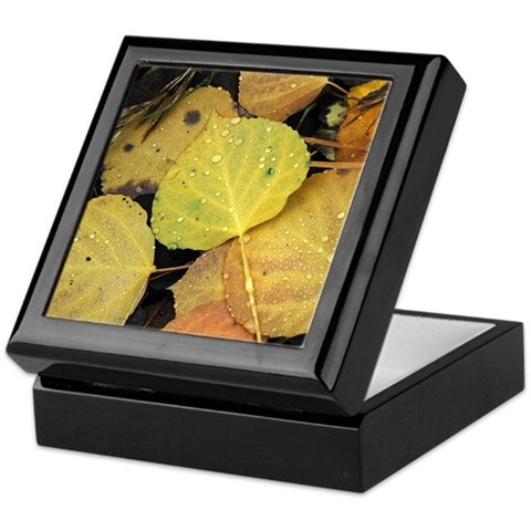 - Aspen Dew Colorado Keepsake Box by CafePress