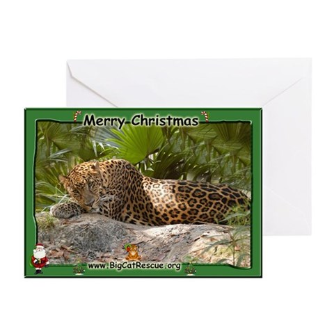 017 Leopard Christmas Cards Pk of 20 Family Greeting Cards Pk of 20 by CafePress