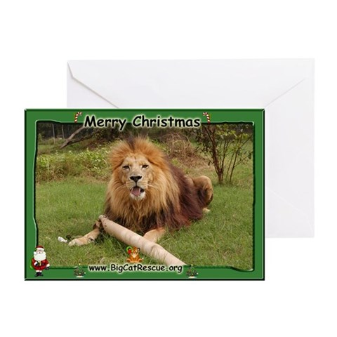 006 Cameron's Toy Christmas Cards 20 Pk Animals Greeting Cards Pk of 20 by CafePress