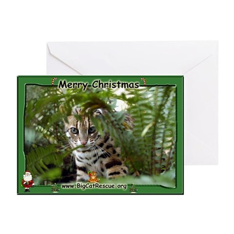 022 Bengal Cat Christmas Cards Pk of 20 Humor Greeting Cards Pk of 20 by CafePress