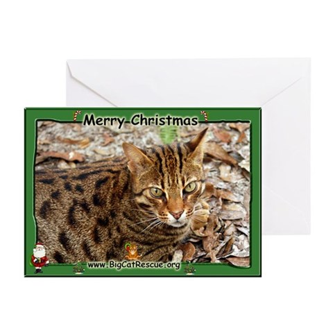 001 Bengal Cat Christmas Cards Pk of 20 Humor Greeting Cards Pk of 20 by CafePress