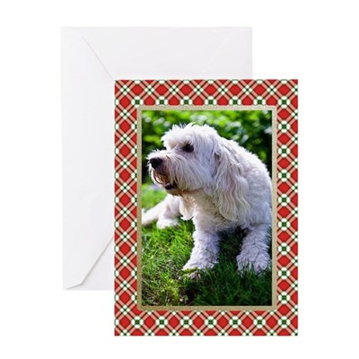 Labradoodle Christmas Card