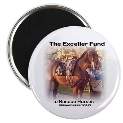 - Exceller Photo Magnet by CafePress