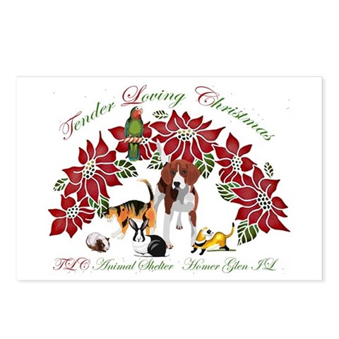 Pointsettia critters Pets Postcards Package of 8 by CafePress
