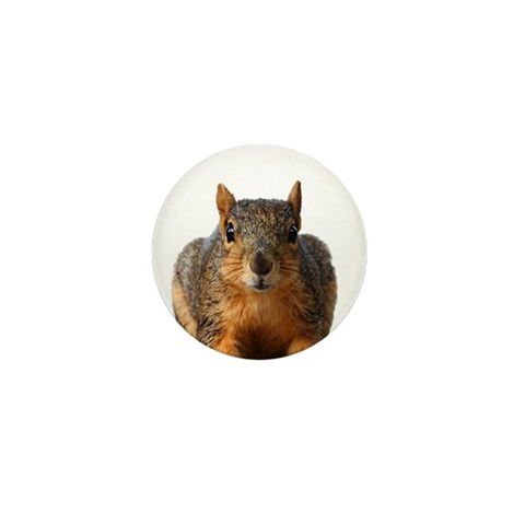 - Squirrel Humor Mini Button by CafePress