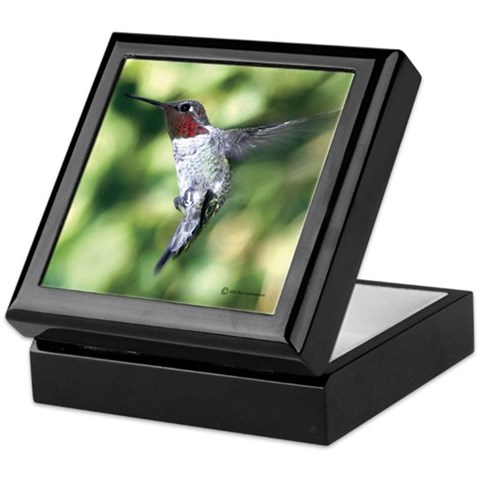 Hummingbird 3 Photography Keepsake Box by CafePress