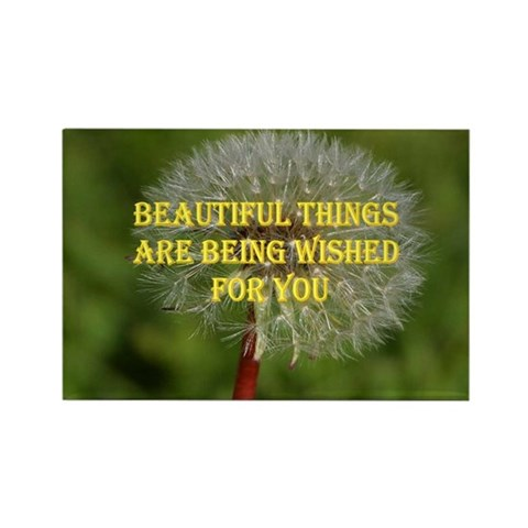 - BEAUTIFUL THINGS Love Rectangle Magnet by CafePress