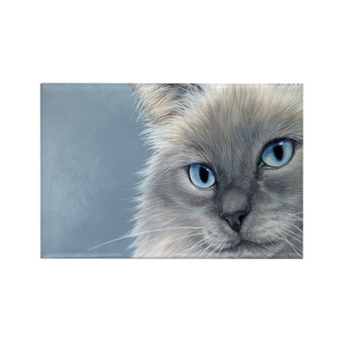 Ragdoll Cats 2 Cat Rectangle Magnet by CafePress