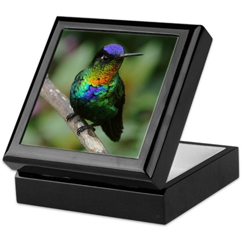 Fiery-Throated Hummingbird Photo  Birds Keepsake Box by CafePress