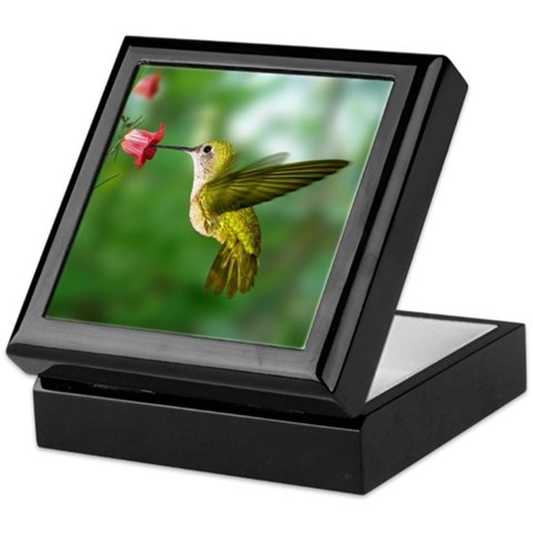 Hummingbird in Flight Bird Photo  Bird Keepsake Box by CafePress