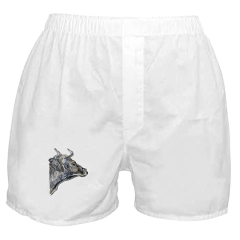'Ox'er Painting Boxer Shorts by CafePress