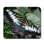 Mousepad Butterfly 2