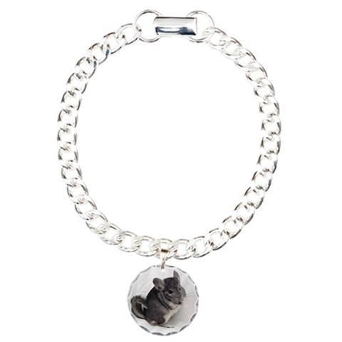 Chinchilla Charm Bracelet Cupsreviewcomplete Charm Bracelet, One Charm by CafePress