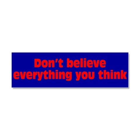 Don't Believe  Funny Car Magnet 10 x 3 by CafePress