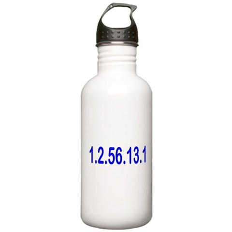 1.2.56.13.1  Sports Stainless Water Bottle 1.0L by CafePress