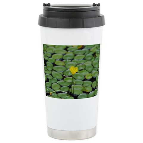 - Lilly Pads Art / photography Ceramic Travel Mug by CafePress