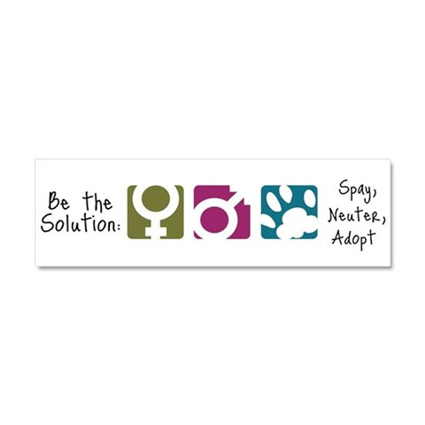 Be the Solution  Pets Car Magnet 10 x 3 by CafePress