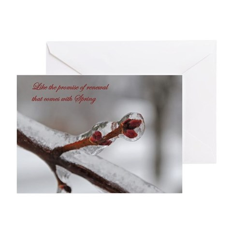 - Frozen Branch Christmas Greeting Cards Pk of 10 by CafePress