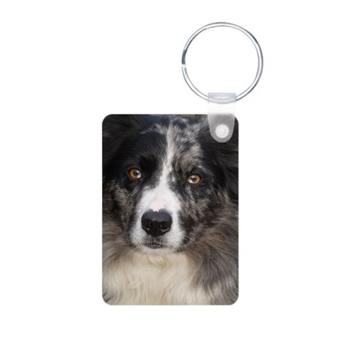 Border Collie  Pets Aluminum Photo Keychain by CafePress