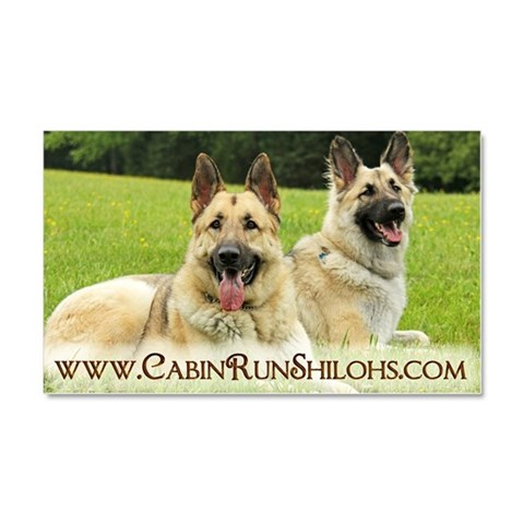 Cabin Run  Pets Car Magnet 20 x 12 by CafePress