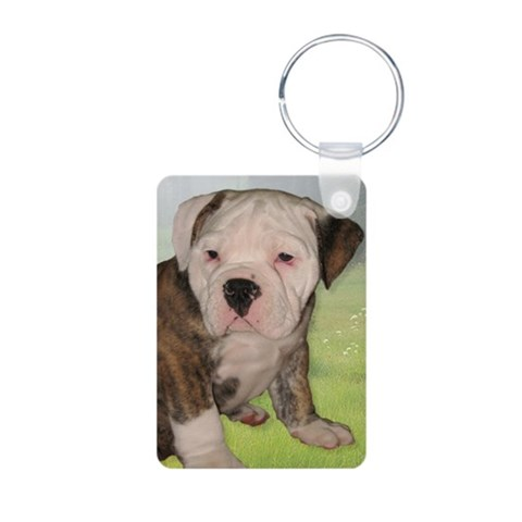 Bulldog Puppy  Pets Aluminum Photo Keychain by CafePress