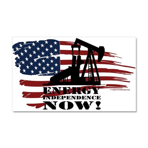 Oil Car Magnet 20 x 12 by CafePress