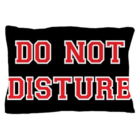 Do Not Disturb  Funny Pillow Case by CafePress