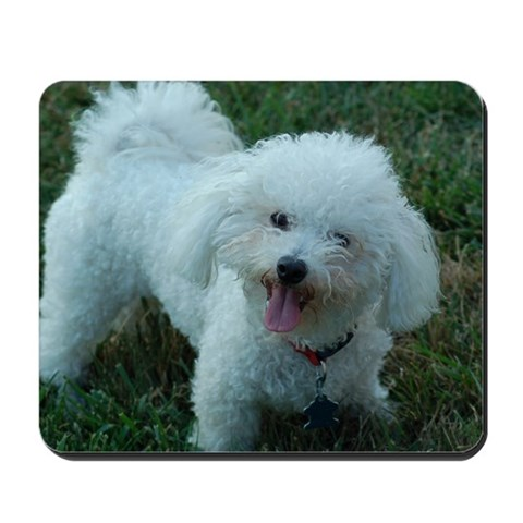 Bichon Frise Mousepad by CafePress