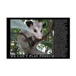 We Can't Play Possum (11x17 poster)