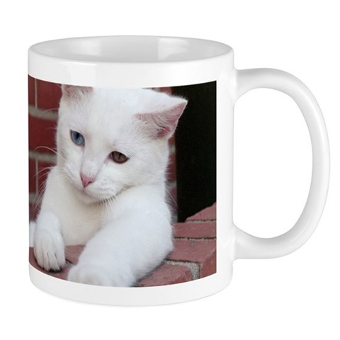 Oklahoma Kitty Cat Mug by CafePress