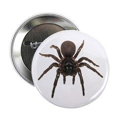 Funnel web spider button