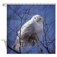 Snowy White Owl Shower Curtain