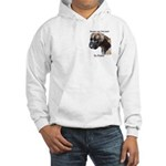Boxers are the Best Brindle u Hooded Sweatshirt
