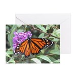 Butterfly: Monarch Greeting Cards