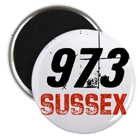 973  State 2.25 Magnet 100 pack by CafePress