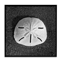Sand Dollar (B&W) Tile Coaster