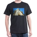 Abbey building T-Shirt