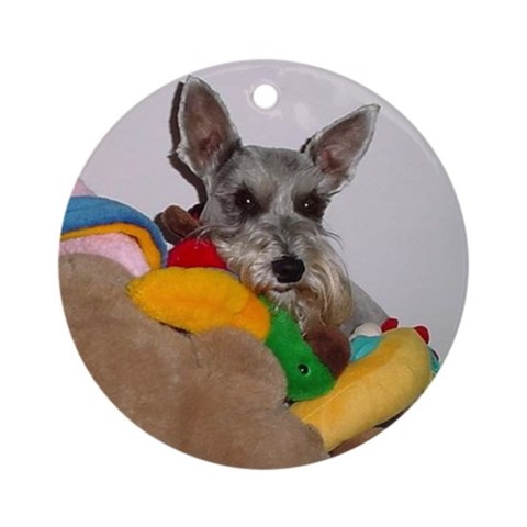 - Lilly Pets Round Ornament by CafePress