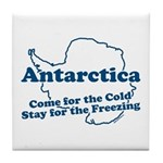 Antarctica. Come for the Cold. Stay for the Freezing. Tourism at its best.
