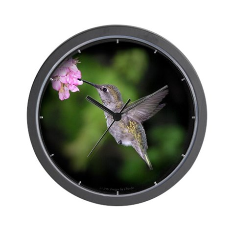 Beautiful Hummingbird  Art Wall Clock by CafePress
