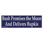 Bush promises the Moon