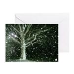 Winter Solstice Greeting Cards - 6 cards