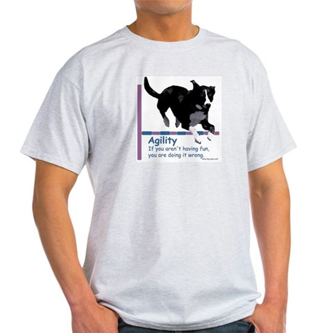 Have Fun in Agility Humor Light T-Shirt by CafePress